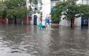 Bão số 2: Đường phố Hải Phòng ngập sâu, CSGT lội nước làm nhiệm vụ