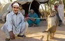 Fan chế ảnh hài hước giúp Federer khám phá Ấn Độ