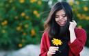 Hoa dã quỳ nở nộ, dân phượt lại một phen lên đường