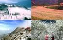 Đi đâu du lịch để tận hưởng mùa đông miền Bắc?