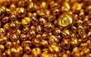 Sự thật ngạc nhiên về vàng khiến bạn bất ngờ