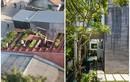 Hai ngôi nhà Việt được vinh danh ở giải kiến trúc quốc tế
