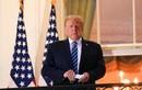 Tổng thống Trump tung nỗ lực mới nhất để lật ngược kết quả bầu cử