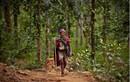 Cuộc sống của bộ tộc săn bắt cuối cùng ở Nepal ở thế kỉ 21