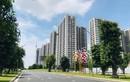Mua căn hộ 3 tỷ cho thuê, ba năm sau bán lỗ gần 1 tỷ