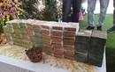 Lý do khó xử lý vụ bán lan đột biến 250 tỷ ở Quảng Ninh