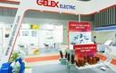 Gelex vừa thu về 146 tỷ đồng từ việc bán cổ phiếu quỹ