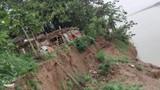 """Bờ sông Hồng sạt lở, hơn 20 hộ dân sợ bị """"Hà Bá"""" nuốt chửng"""