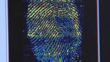 Video: Công nghệ vân tay mới dựng chân dung nghi phạm hoàn hảo