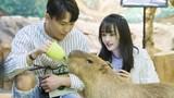 Rộ nghi vấn Trịnh Sảng có hai con với tình cũ Trương Hằng