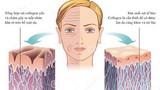 Bổ sung đúng cách, collagen sẽ là chìa khóa cho tuổi thanh xuân