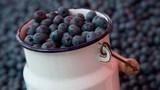 8 thực phẩm giúp tăng khả năng giải độc tự nhiên của cơ thể