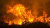 Video: Rùng mình cảnh ô tô lao qua khu rừng cháy ngùn ngụt