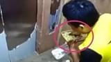 Video: Shipper hồn nhiên ăn vụng thức ăn của khách hàng giữa đường