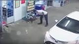 Video: Thanh niên đi ôtô vào đổ xăng, tiện tay trộm chó mang về