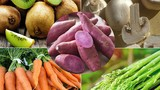 Video: 5 thực phẩm rất tốt trong việc phòng chống bệnh ung thư