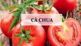 """Cà chua - thực phẩm """"vàng"""" trong """"làng"""" trị mụn được chị em ưa chuộng"""