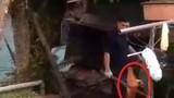 Phẫn nộ cảnh người đàn ông dùng gậy đập chết 2 con chó nhỏ