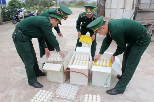 Phat hien 24.000 qua trung lon bat thuong co chu Trung Quoc