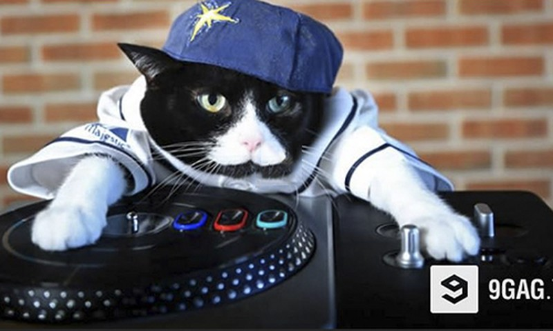 Xem meo xinh choi nhac DJ cuc ngau
