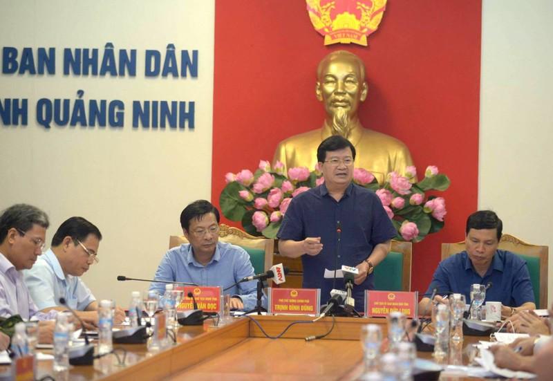 Pho Thu tuong Trinh Dinh Dung chi dao phong, chong bao tai Quang Ninh