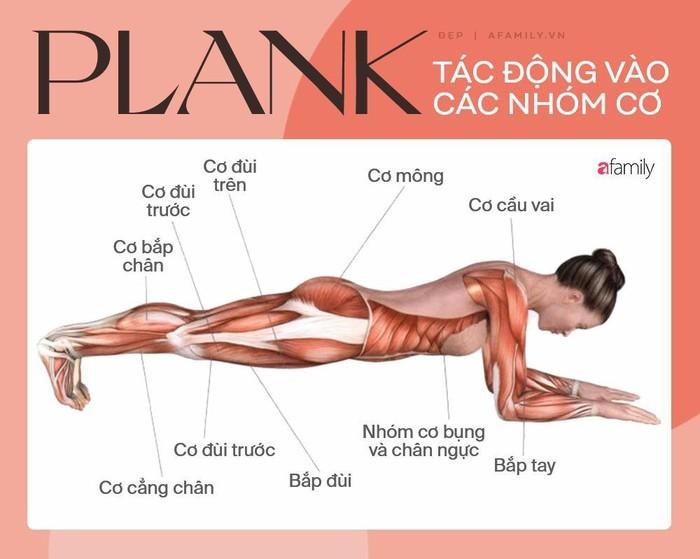Tap plank kieu nay giup tang hieu qua dot mo bung duoi cuc tot-Hinh-4
