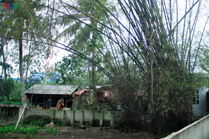 Vi sao dan vay Nha may thep Hoa Phat - Dung Quat?-Hinh-2