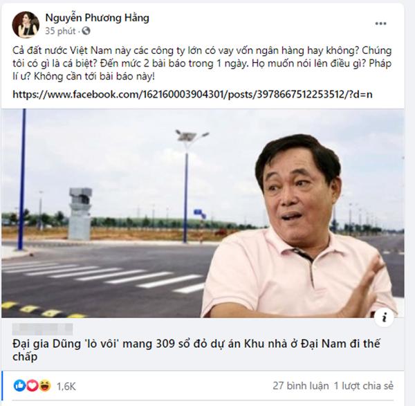 """309 so do du an khu nha o Dai Nam the chap: Vo dai gia Dung """"lo voi"""" noi gi?"""
