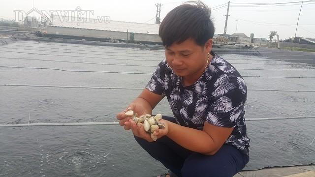 Nghe la o Ninh Binh: Can cat lay tien thu, trieu dong