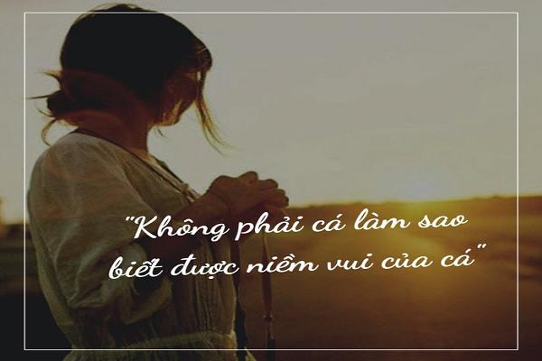 Nguoi khon chang song vi ke khac nhin vao ma phai nhu the nay...