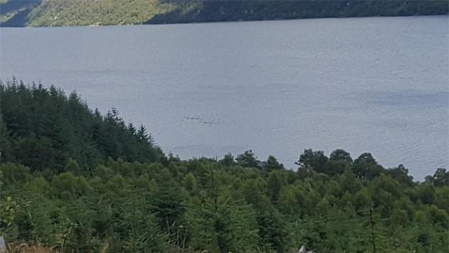 Su xuat hien cua 2 quai vat ho Loch Ness boi song song?