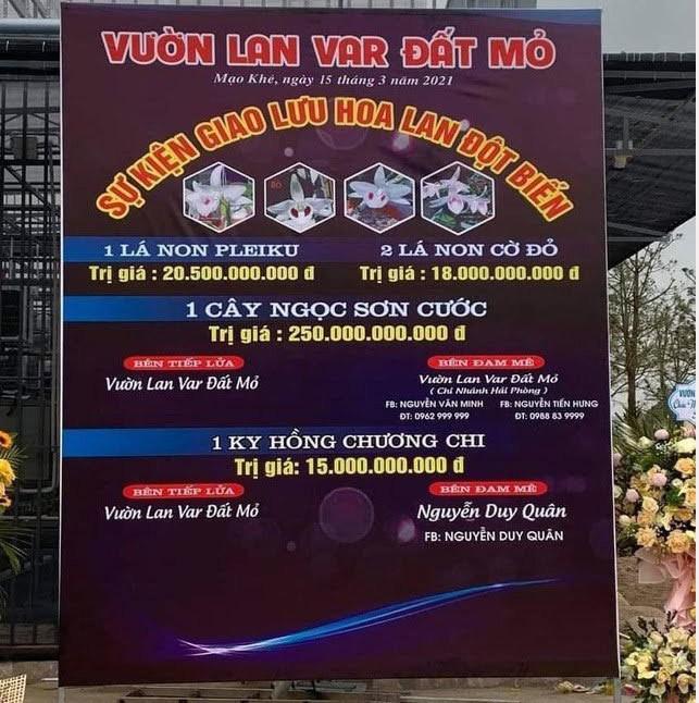 Ly do kho xu ly vu ban lan dot bien 250 ty o Quang Ninh