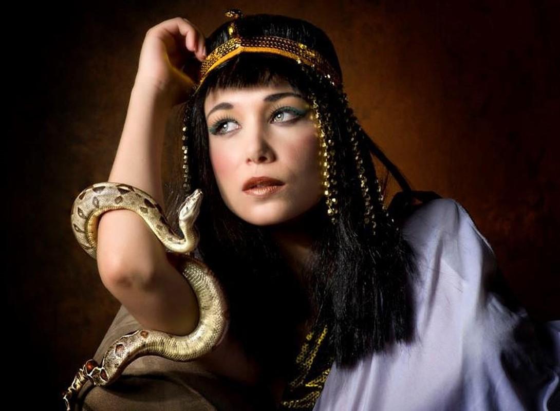 Loai ran can chet nu hoang Cleopatra doc the nao?-Hinh-3