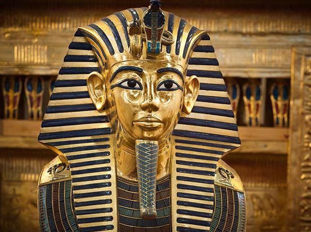 Loai ran can chet nu hoang Cleopatra doc the nao?-Hinh-4