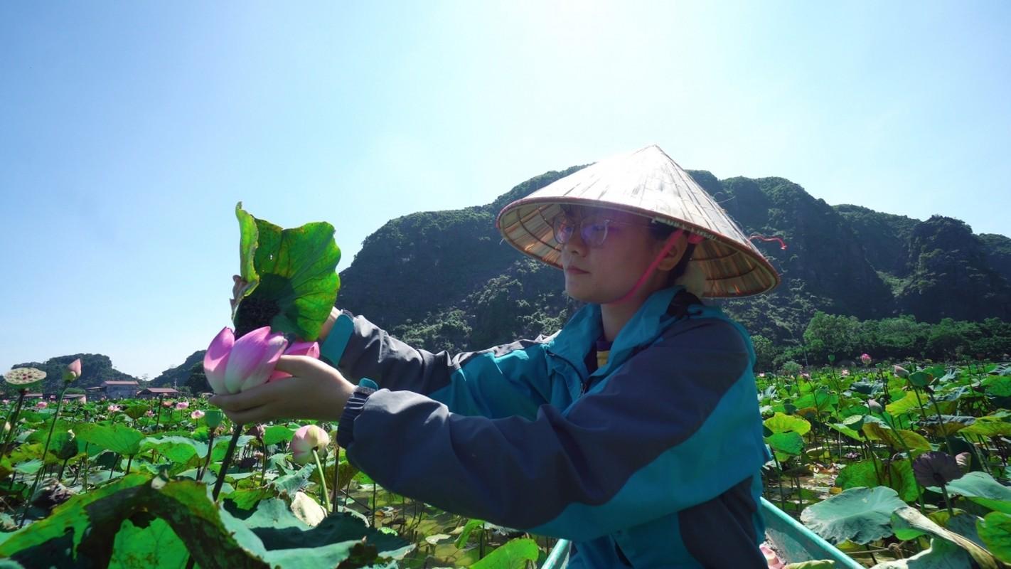 Cac mon che tu sen o Ninh Binh-Hinh-2