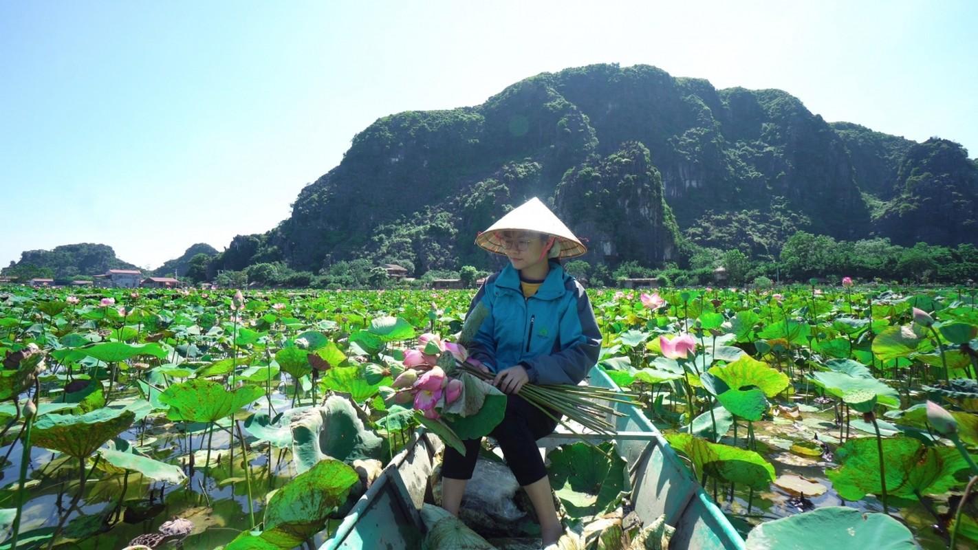 Cac mon che tu sen o Ninh Binh-Hinh-3