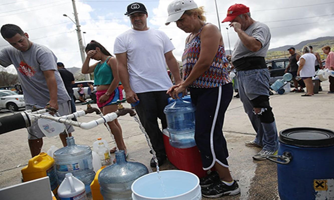 15 buc anh ve khung hoang nhan dao o Puerto Rico-Hinh-10