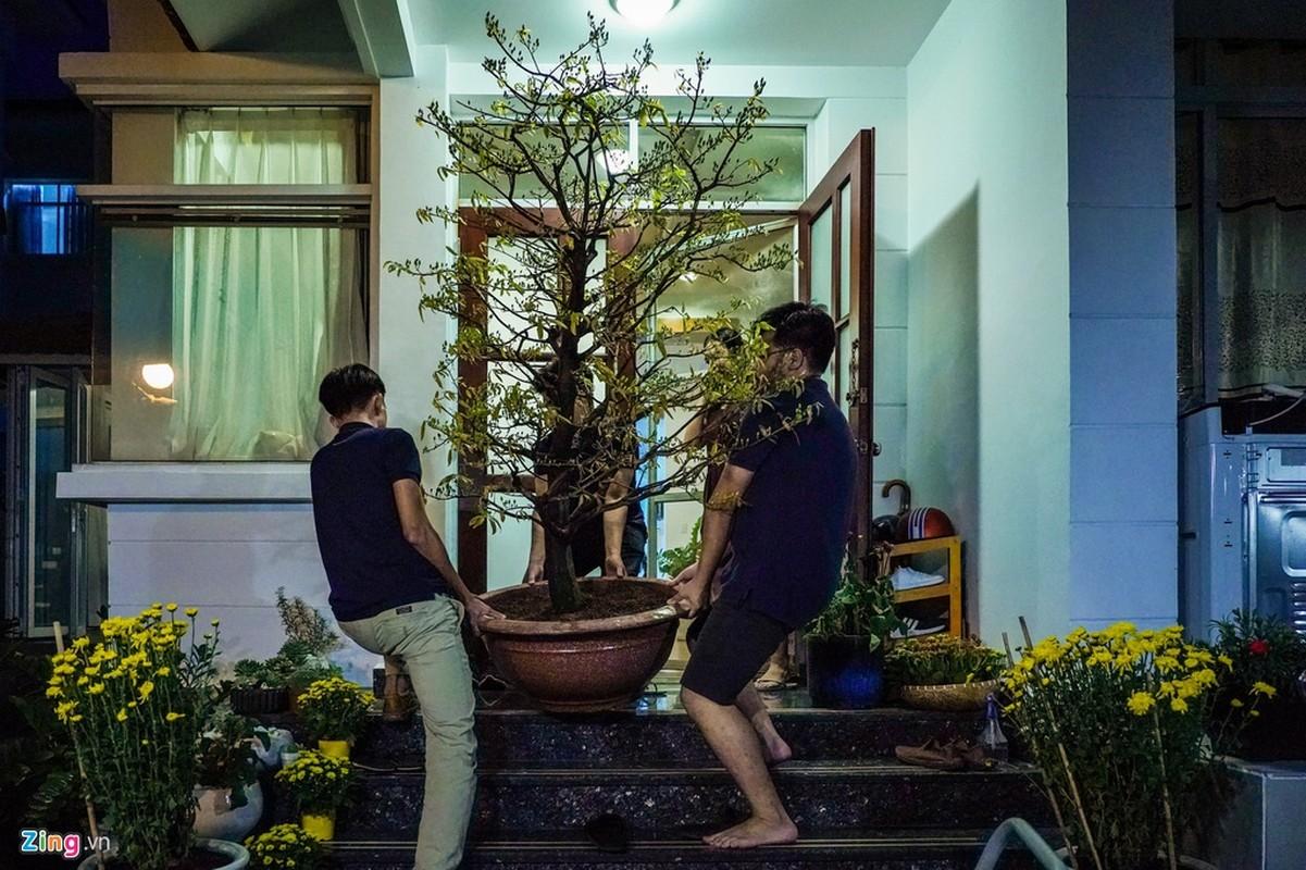 Canh trang hoang don Tet tai pho nha giau TP HCM-Hinh-6