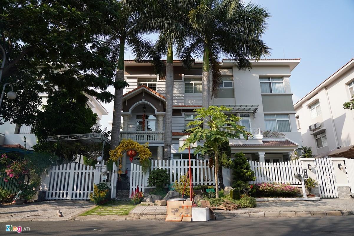 Canh trang hoang don Tet tai pho nha giau TP HCM-Hinh-9