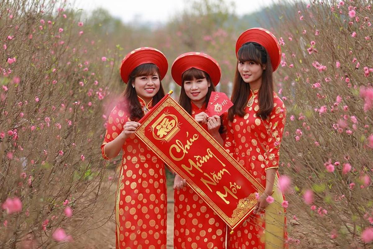 Dia diem chup hinh Tet duoc nguoi Ha Thanh yeu thich-Hinh-8