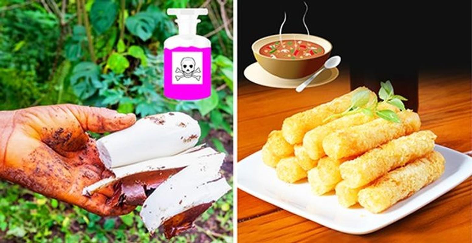 Diem danh 10 loai thuc pham chua doc to co the lam hai ban