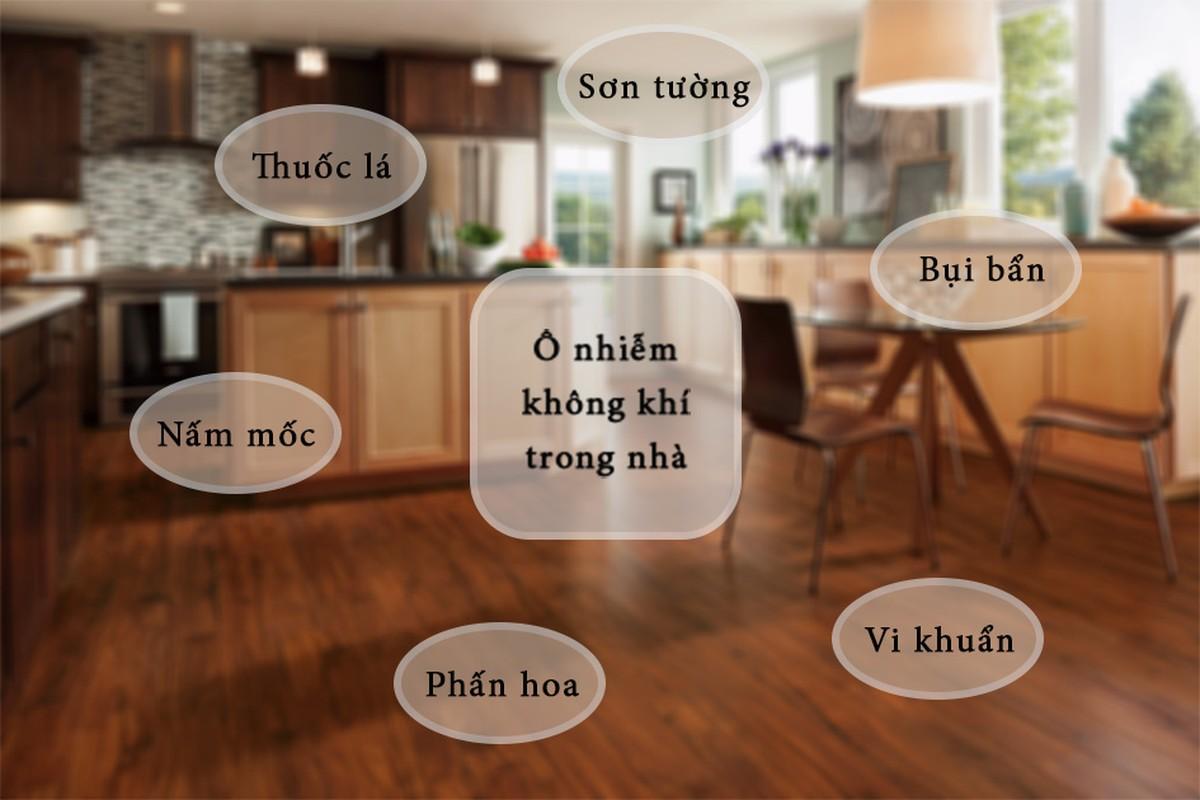 "Loai bo hung thu gay ""ban"" nha, may loc khong khi co hieu qua?-Hinh-2"