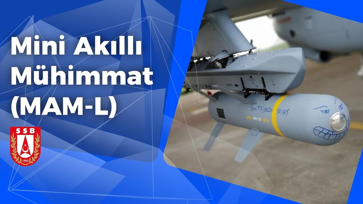 Vuot mat Israel, Tho Nhi Ky tro thanh sieu cuong UAV tiep theo-Hinh-7