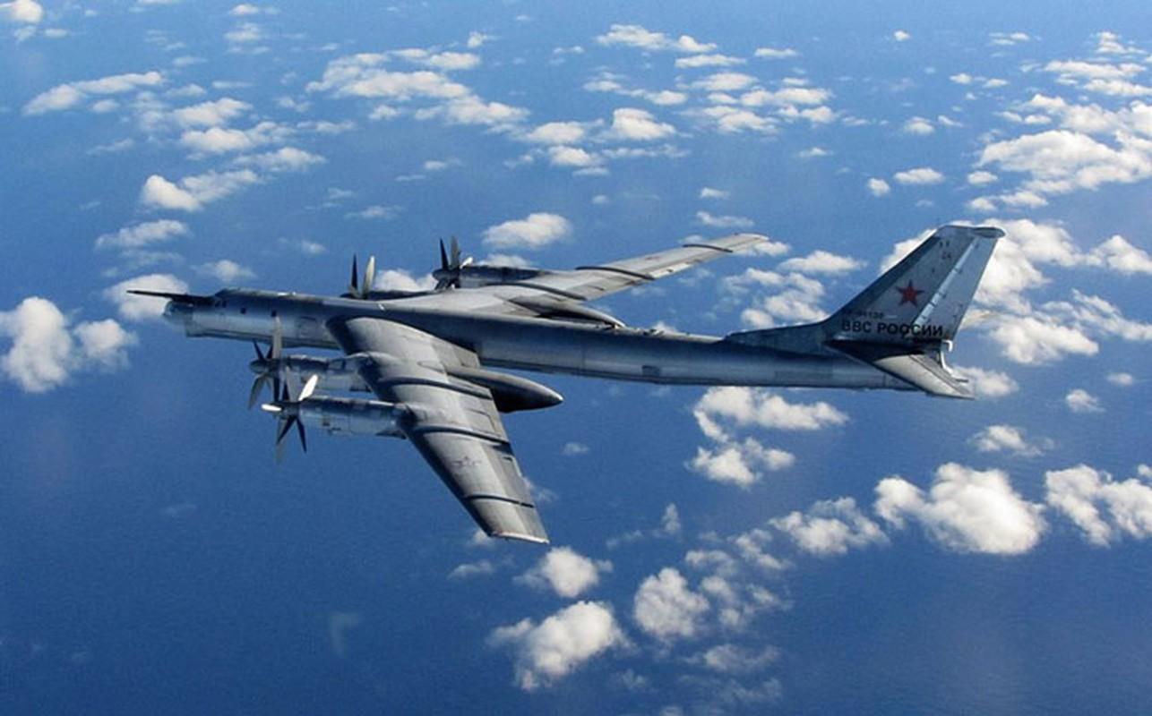 Tai sao Nga khong dung may bay nem bom chien luoc Tu-95 o Syria?-Hinh-10