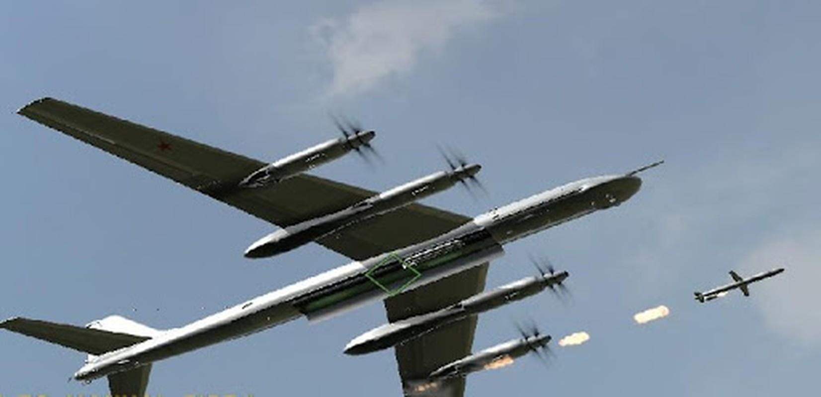 Tai sao Nga khong dung may bay nem bom chien luoc Tu-95 o Syria?-Hinh-16
