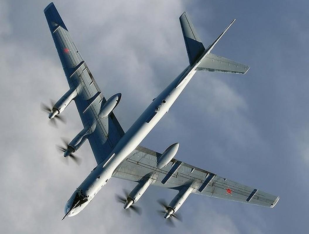Tai sao Nga khong dung may bay nem bom chien luoc Tu-95 o Syria?-Hinh-7