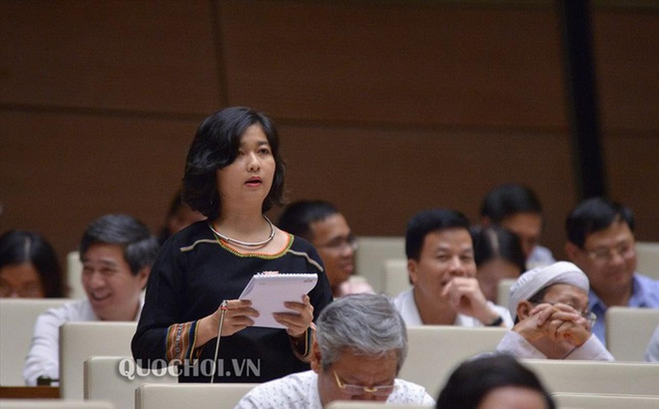 """Diem lai phat ngon """"day song"""" nghi truong cua dai bieu Ksor H'bo Khap-Hinh-6"""