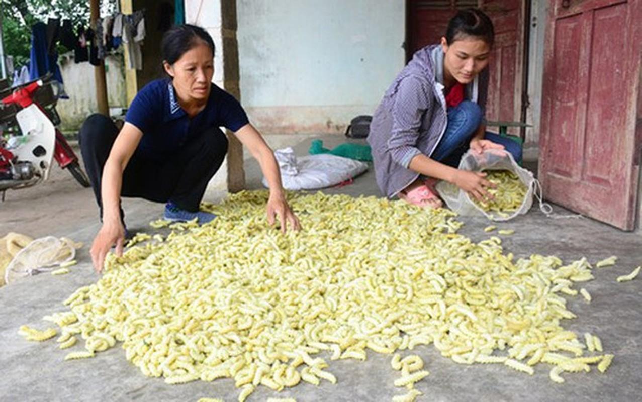 Con trung tren ban an: Kinh di khong phai ai cung dam thu-Hinh-4