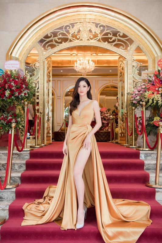 Trang phuc xe bao khoe doi chan 1m22 cua hoa hau Luong Thuy Linh-Hinh-10