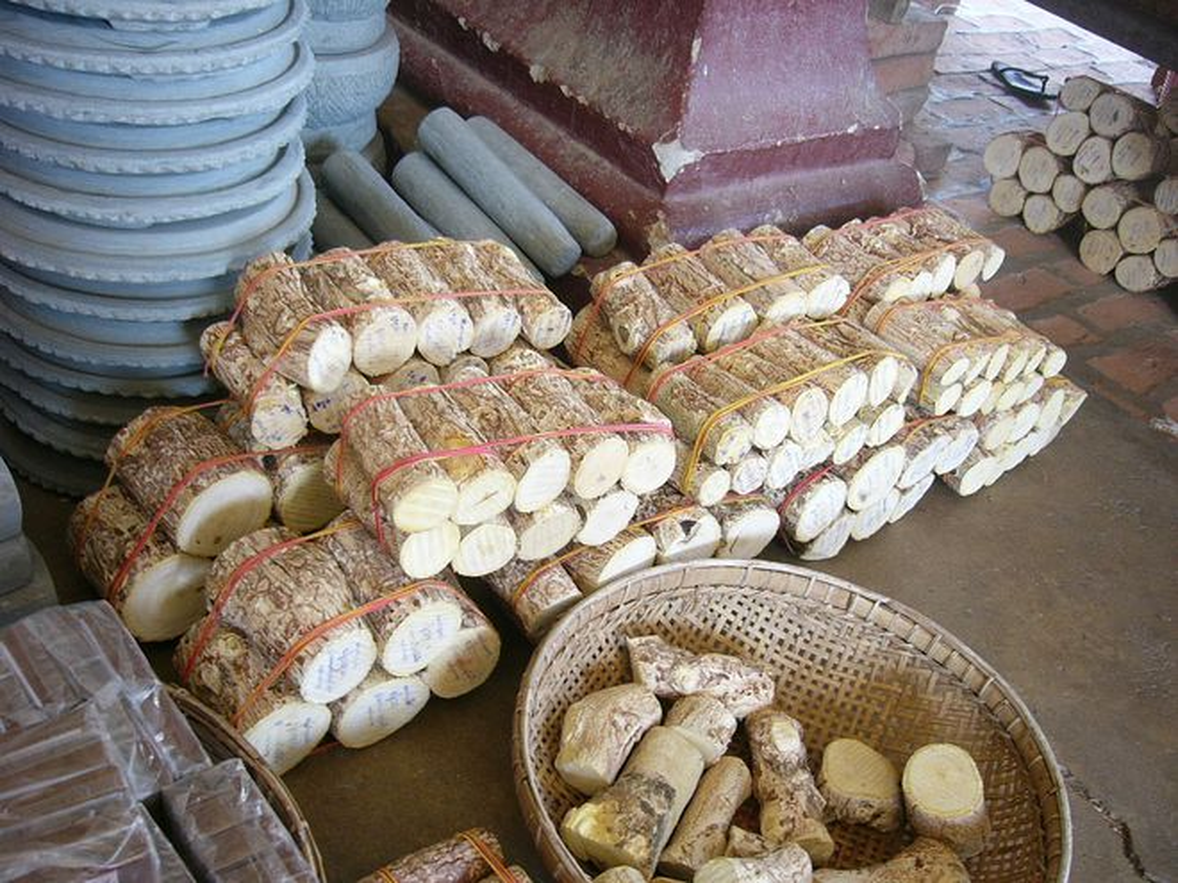 "Kham pha bi quyet lam dep truyen thong ""cuc la"" cua phu nu Myanmar-Hinh-4"